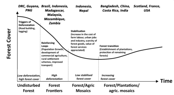 forest-cover-graph2