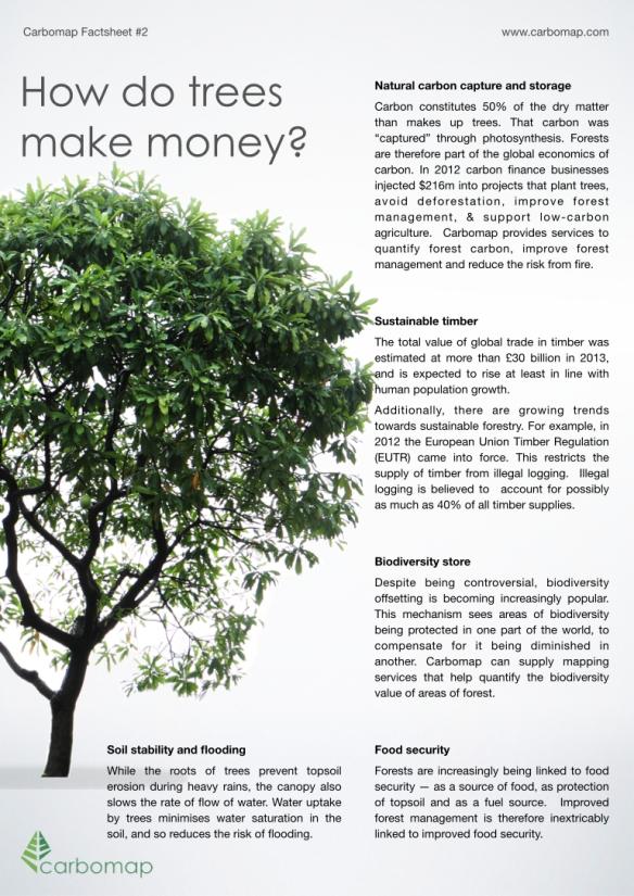 How do trees make money?